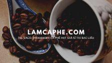 ca-phe-hat-tai-bac-lieu-0904684089-13042020-01_1