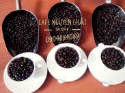 cafe-nguyen-chat-gia-si-ba-ria-vung-tau-12022020-01_1