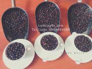 cafe-nguyen-chat-gia-si-tai-binh-duong-12022020-01_10