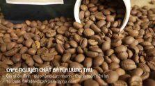 cung-cap-ca-phe-nguyen-chat-tai-ba-ria-vung-tau-0904684089-040420-01_1